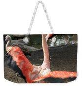 Chilean Flamingo Weekender Tote Bag
