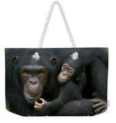 Chimpanzee Female Holding Infant Weekender Tote Bag