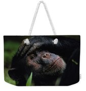 Chimpanzees, As Reported By Jane Weekender Tote Bag