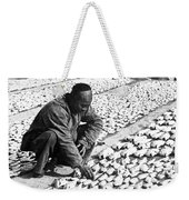 Chinese Man Drying Fish On The Shore - C 1902 Weekender Tote Bag