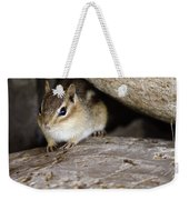 Chipmunk In Danger Weekender Tote Bag