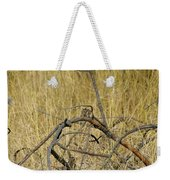 Chipmunk In The Sun Weekender Tote Bag
