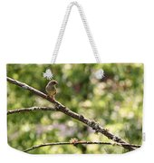 Chipping Sparrow Weekender Tote Bag