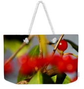 Choice Berry Weekender Tote Bag by LeeAnn McLaneGoetz McLaneGoetzStudioLLCcom
