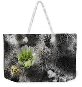 Cholla Blossoms Weekender Tote Bag
