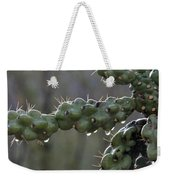 Cholla Cactus In The Rain Weekender Tote Bag