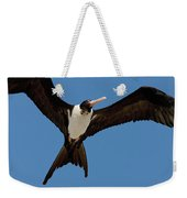 Christmas Island Frigatebird Fregata Weekender Tote Bag