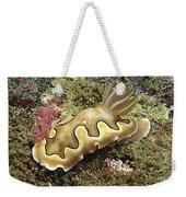Chromodoris Coi Beige Nudibranch Weekender Tote Bag