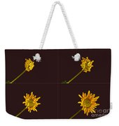 Chrysanthemum Blooming Sequence Weekender Tote Bag