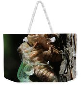Cicada - Third In Series Weekender Tote Bag