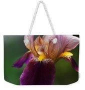 Classic Purple Two-tone Dutch Iris Weekender Tote Bag