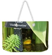 Clever Froggy's Hideout Weekender Tote Bag