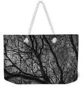 Climbing Escaped Scratches  Weekender Tote Bag