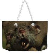 Close Up Of A Rats Fast-growing Teeth Weekender Tote Bag