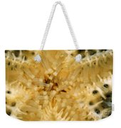 Close-up Of A Starfish Mouth Weekender Tote Bag