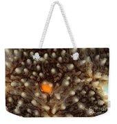 Close-up Of A Starfish Weekender Tote Bag