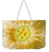 Close-up Of American Lotus Nelumbo Lutea Weekender Tote Bag