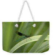 Close-up Of Dragonfly Perched On Leaf Weekender Tote Bag