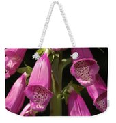 Close Up Of Foxglove Digitalis Flowers Weekender Tote Bag