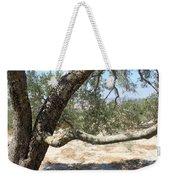 Close Up Olive Tree Weekender Tote Bag