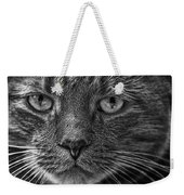 Close Up Portrait Of A Cat Weekender Tote Bag