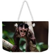 Close View Of A Baby Macaque Weekender Tote Bag