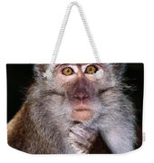Close View Of A Long-tailed Macaque Weekender Tote Bag