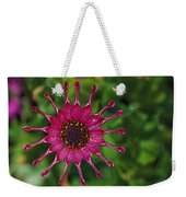 Close View Of A South African Daisy Weekender Tote Bag