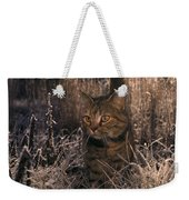 Close View Of A Tabby Cat Weekender Tote Bag