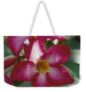 Close View Of A Tree Blossom Flute Weekender Tote Bag