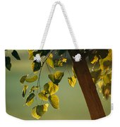 Close View Of A Tree Branch And Leaves Weekender Tote Bag