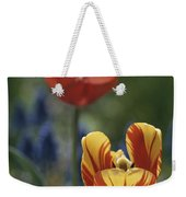 Close View Of Blossoming Tulips Weekender Tote Bag