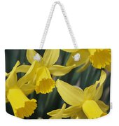 Close View Of Early Spring Daffodils Weekender Tote Bag