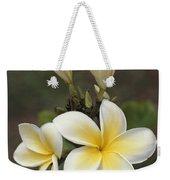 Close View Of Frangipani Flowers Weekender Tote Bag