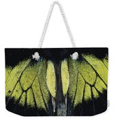 Close View Of Iridescent Moth Wings Weekender Tote Bag