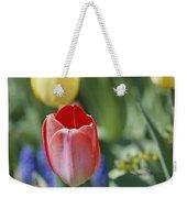 Close View Of Spring Tulips In Bloom Weekender Tote Bag