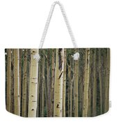 Close View Of Tree Trunks In A Stand Weekender Tote Bag