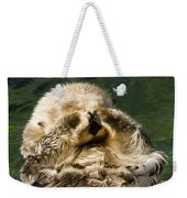 Closeup Of A Captive Sea Otter Covering Weekender Tote Bag