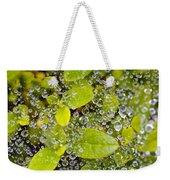 Closeup Of Morning Dew On Leaves Weekender Tote Bag