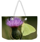 Cloudless Sulfur Butterfly On Bull Thistle Wildflower Weekender Tote Bag
