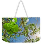 Clover And Sunflare 1 Weekender Tote Bag by Amber Flowers