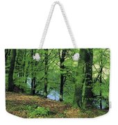 Co Kerry, Standing Stone On Clogher Weekender Tote Bag