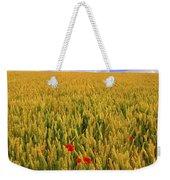 Co Waterford, Ireland Poppies In A Weekender Tote Bag