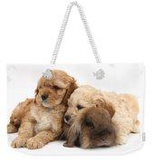 Cockerpoo Puppies And Rabbit Weekender Tote Bag
