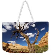 Cohab Canyon Overlook Weekender Tote Bag
