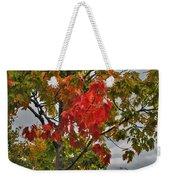Cold Autumn Breeze  Weekender Tote Bag