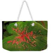 Colius Leaf Weekender Tote Bag