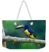 Collared Aracari Weekender Tote Bag