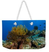 Colony Of Crinoids, Papua New Guinea Weekender Tote Bag