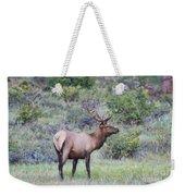 Colorado Elk Weekender Tote Bag